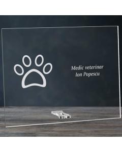 Cadou personalizat placheta din plexiglas - Doctor veterinar | Ghizbi.ro