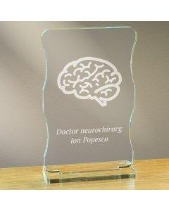 Cadou personalizat trofeu plexiglas cu suport - Doctor neurochirurg | Ghizbi.ro