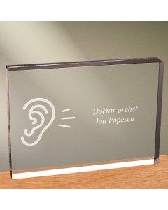 Cadou personalizat trofeu plexiglas dreptunghiular - Doctor orelist   Ghizbi.ro