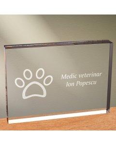 Cadou personalizat trofeu plexiglas dreptunghiular - Doctor veterinar | Ghizbi.ro
