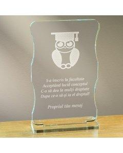 Cadou personalizat trofeu plexiglas cu suport - Absolvent la drept