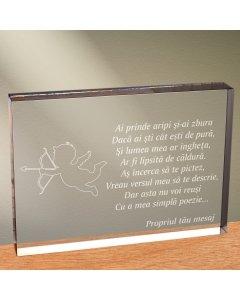 Cadou personalizat trofeu plexiglas dreptunghiular - Ai prinde aripi