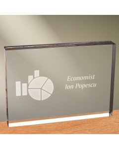 Cadou personalizat trofeu plexiglas dreptunghiular - Economist | Ghizbi.ro