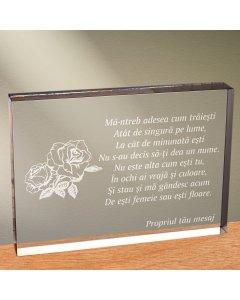 Cadou personalizat trofeu plexiglas dreptunghiular - Fara nume