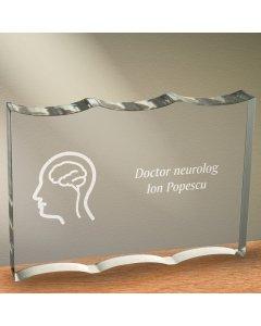 Cadou personalizat trofeu plexiglas dreptunghiular tesitura ondulata - Doctor neurolog