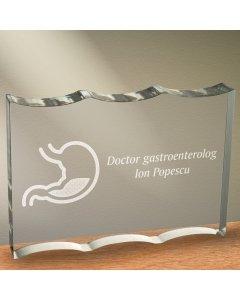 Cadou personalizat trofeu plexiglas dreptunghiular tesitura ondulata - Doctor gastroenterolog
