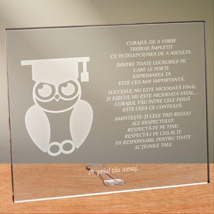 Cadou personalizat placheta din plexiglas - Absolvent la drept